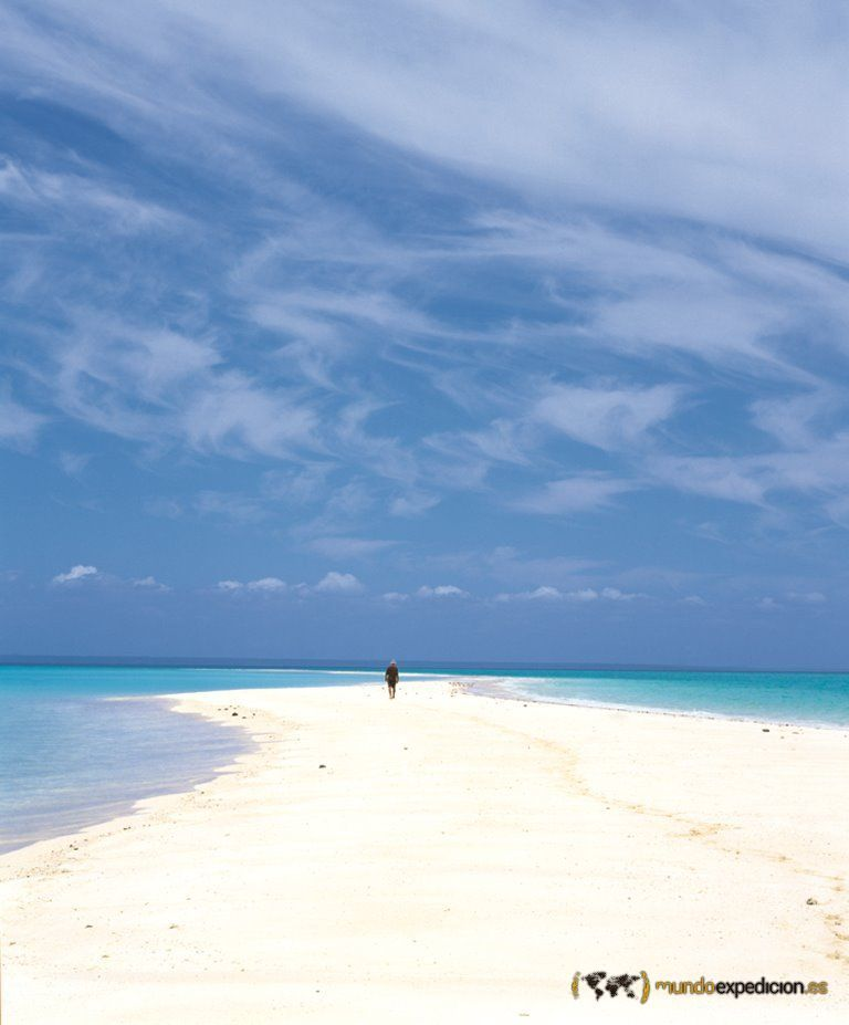 buceo mozambique: